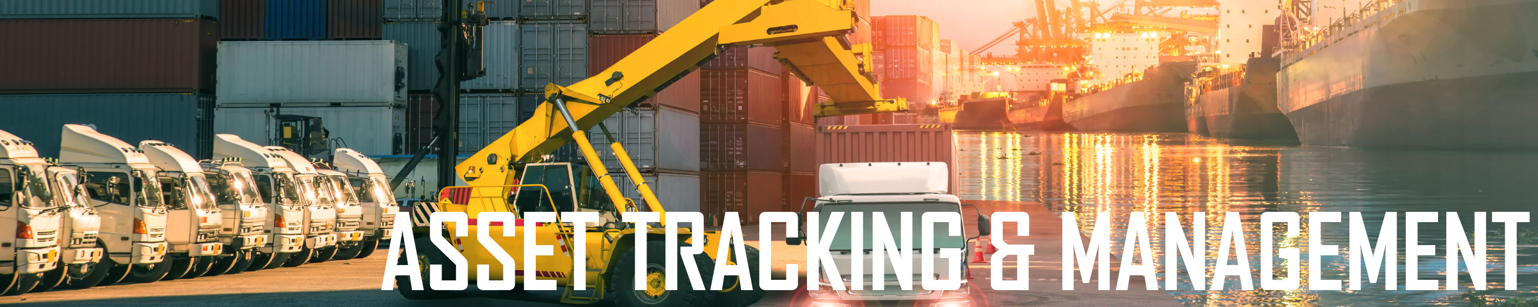 Asset Tracking & Management
