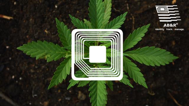 RFID for Cannabis